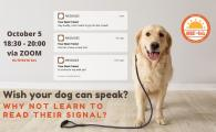 Dog Signals Workshop