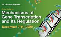 IAS Focused Program on Mechanisms of Gene Transcription and Its Regulation